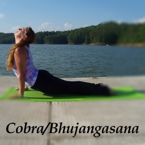 Cobra/Bhujangasana, Poses, Asanas |